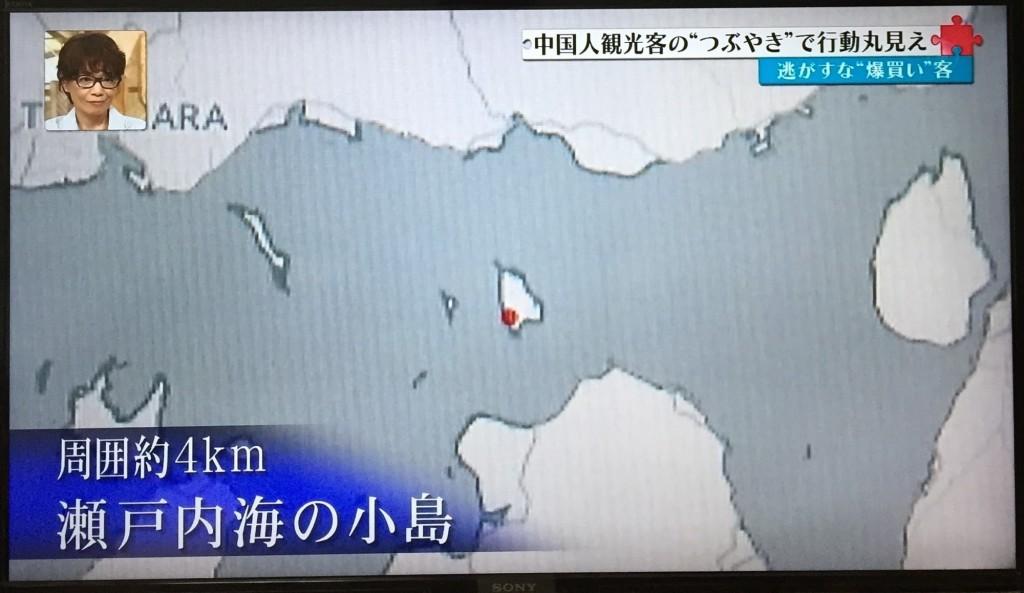 瀬戸内海の大久野島に注目